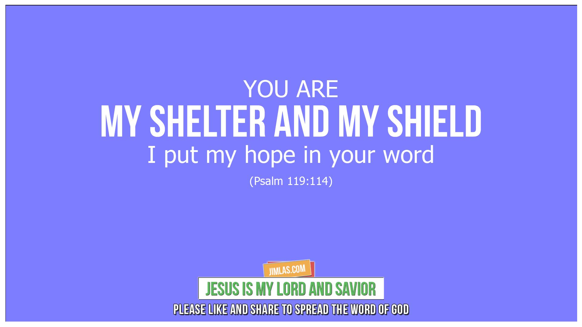 psalm 119 114, Psalm 119:114