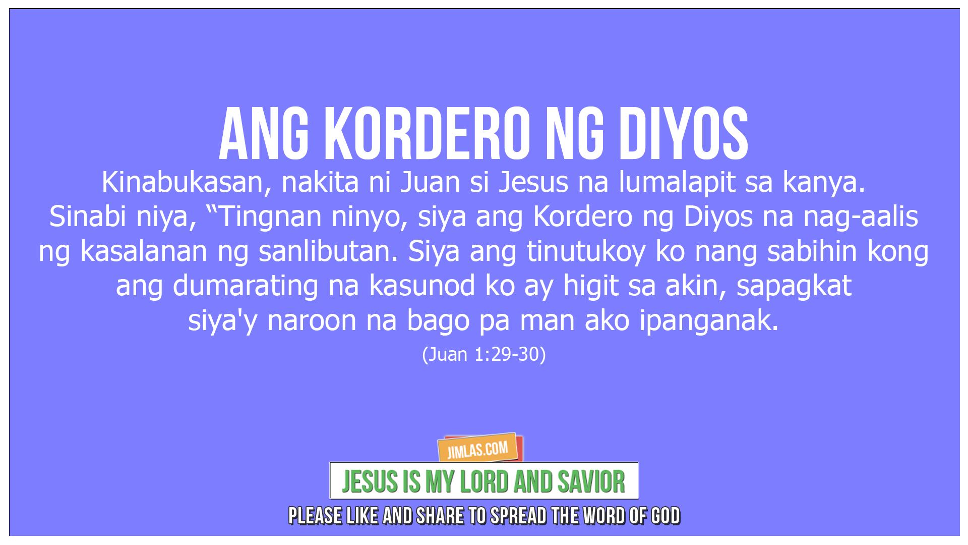 Juan 1 29-30, Juan 1:29-30