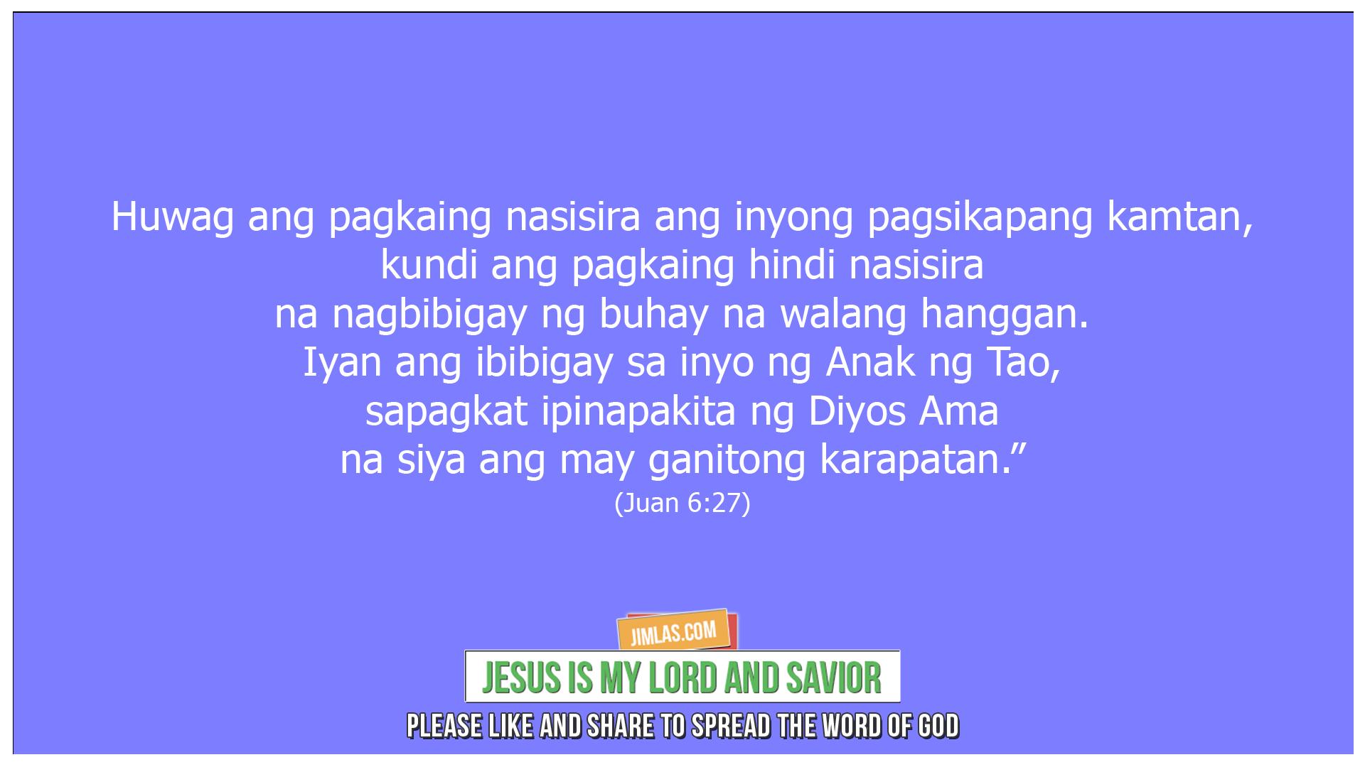 Juan 6 27, Juan 6:27