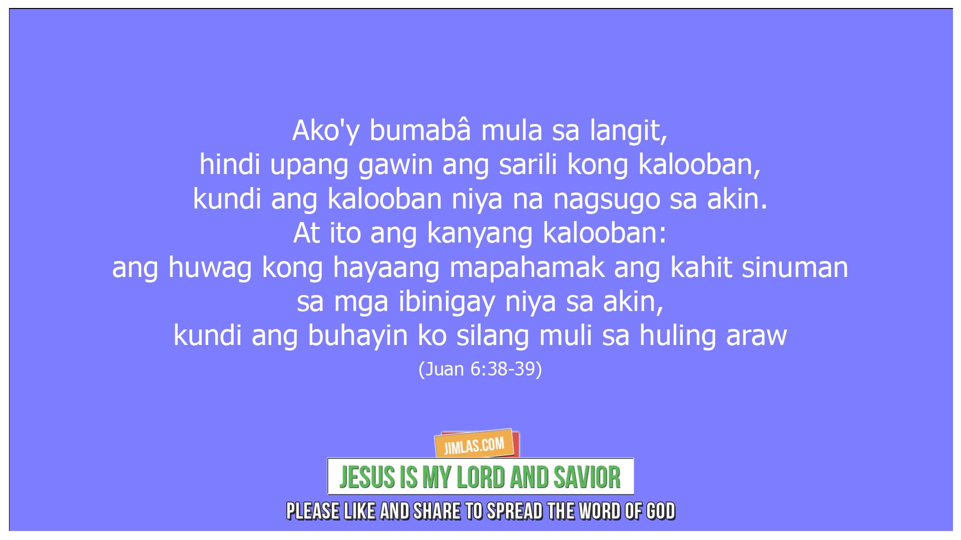 Juan 6 38-39, Juan 6:38-39