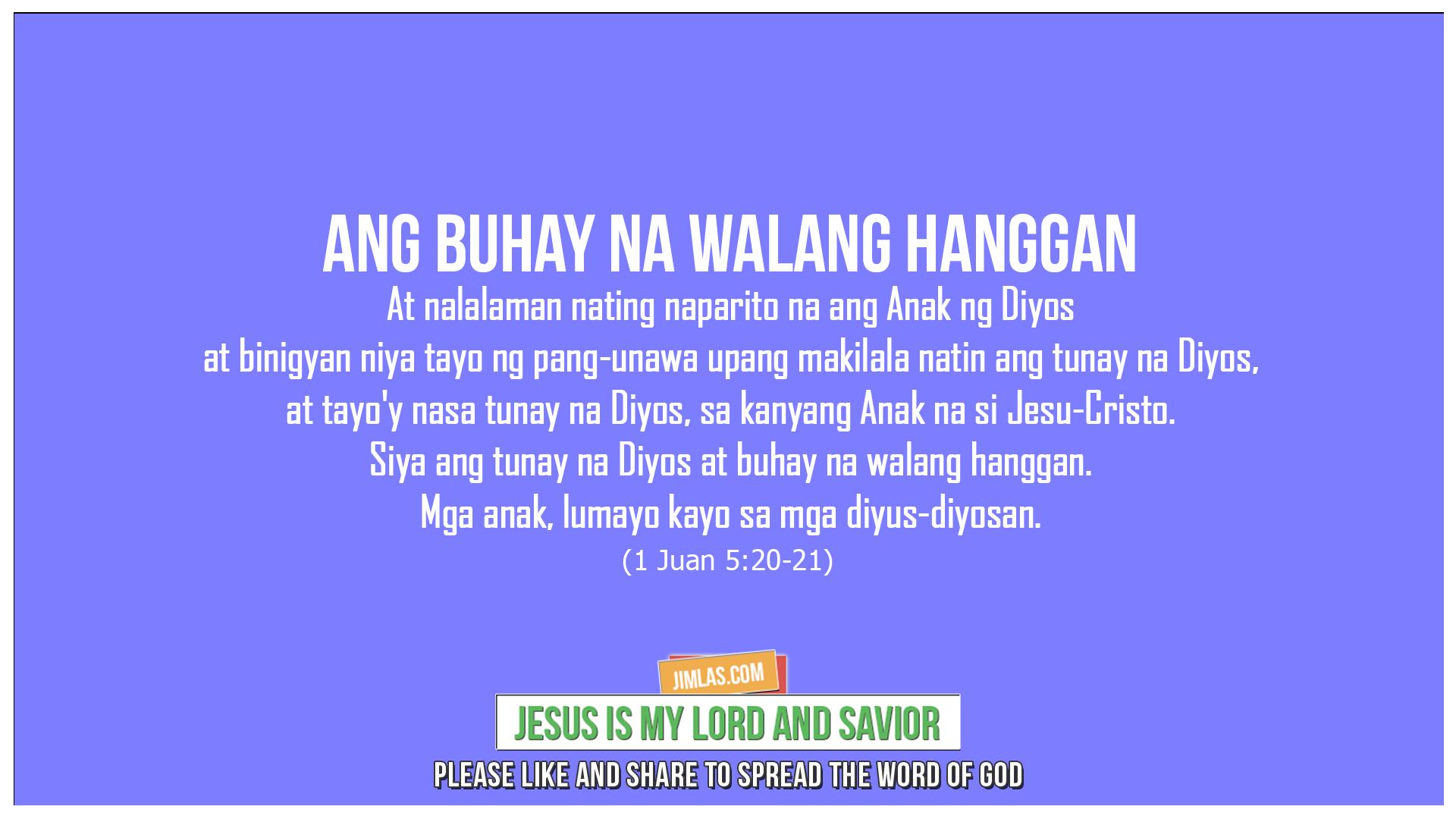 1 Juan 5:20-21, 1 Juan 5:20-21