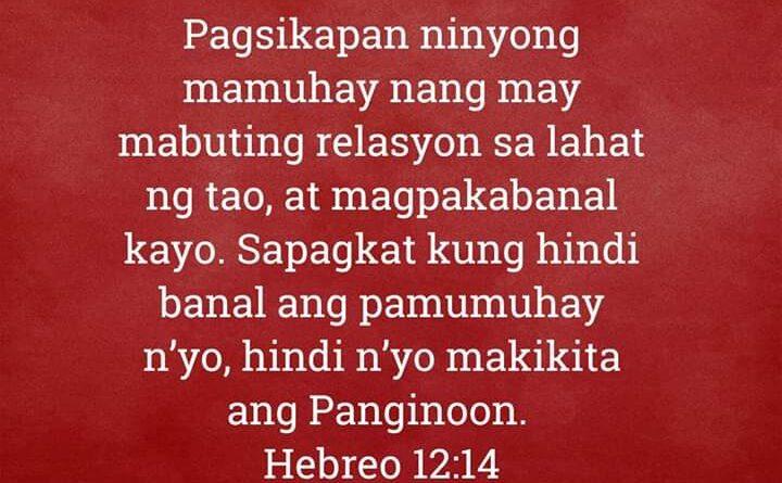 Hebreo 12:14