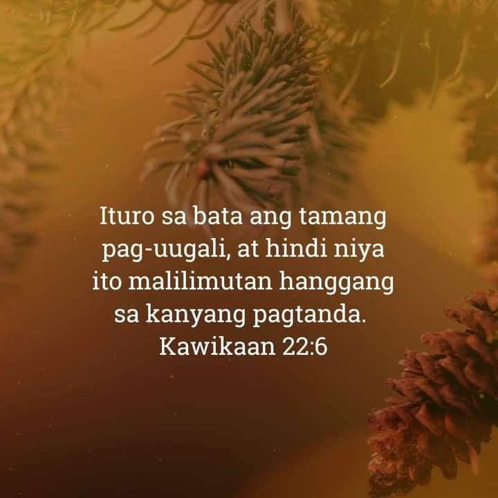 Kawikaan 22:6, Kawikaan 22:6