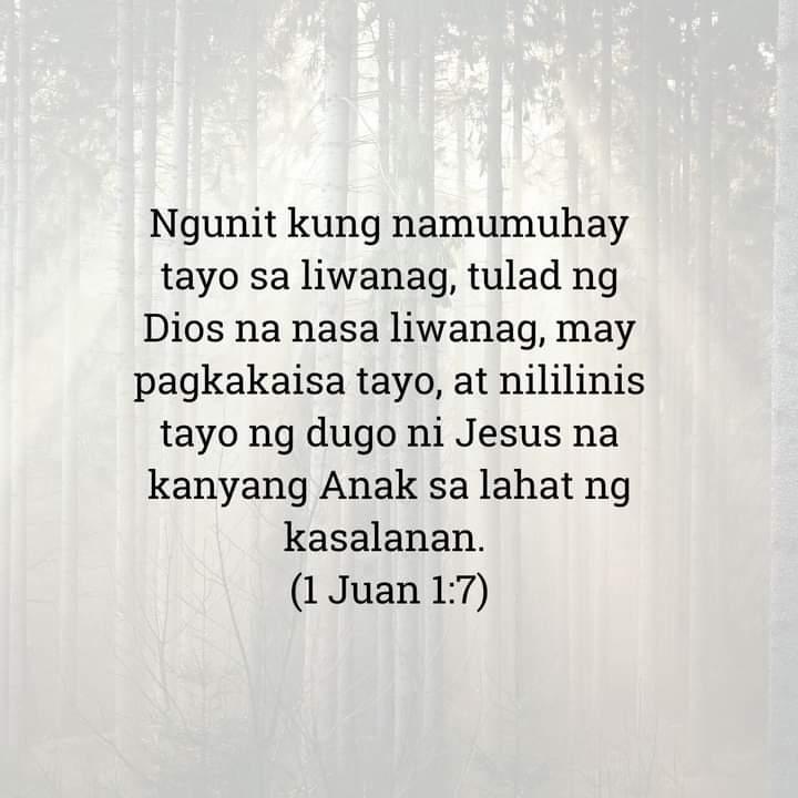 1 Juan 1:7, 1 Juan 1:7