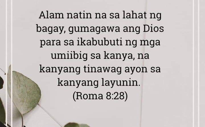 Roma 8:28, Roma 8:28