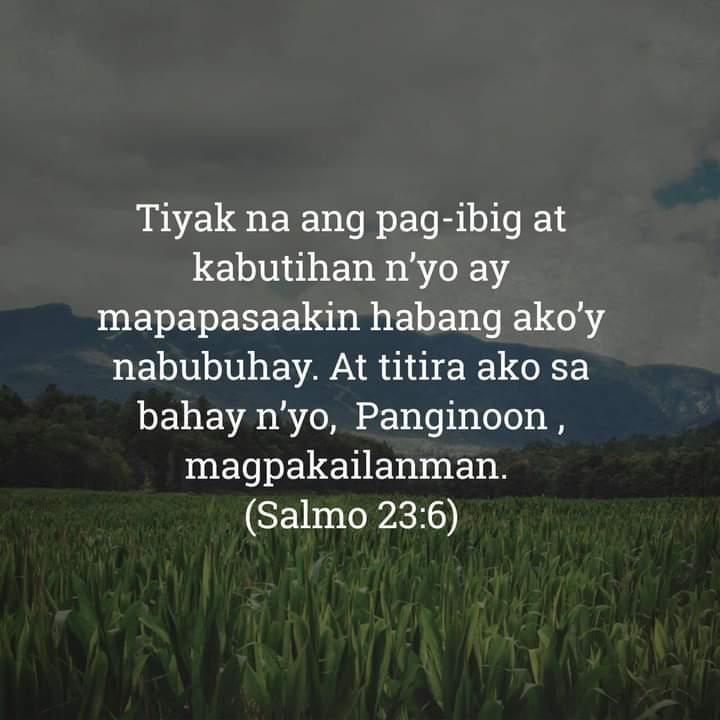 Salmo 23:6, Salmo 23:6