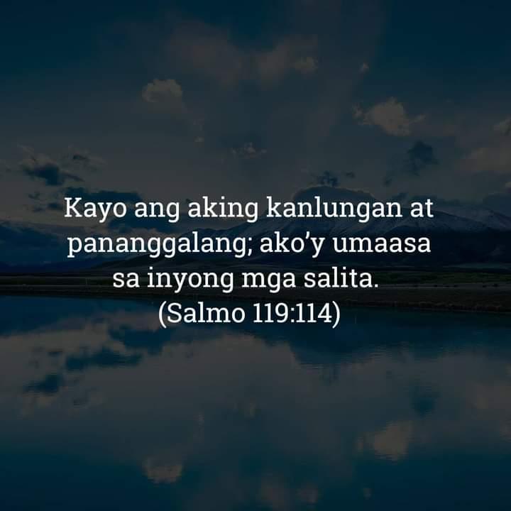 Salmo 119:114, Salmo 119:114