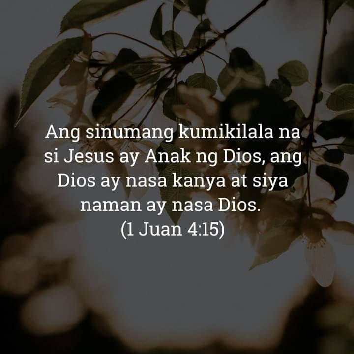 1 Juan 4:15, 1 Juan 4:15