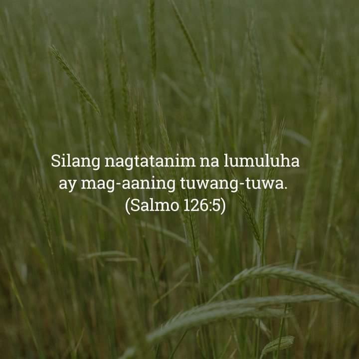 Salmo 126:5, Salmo 126:5