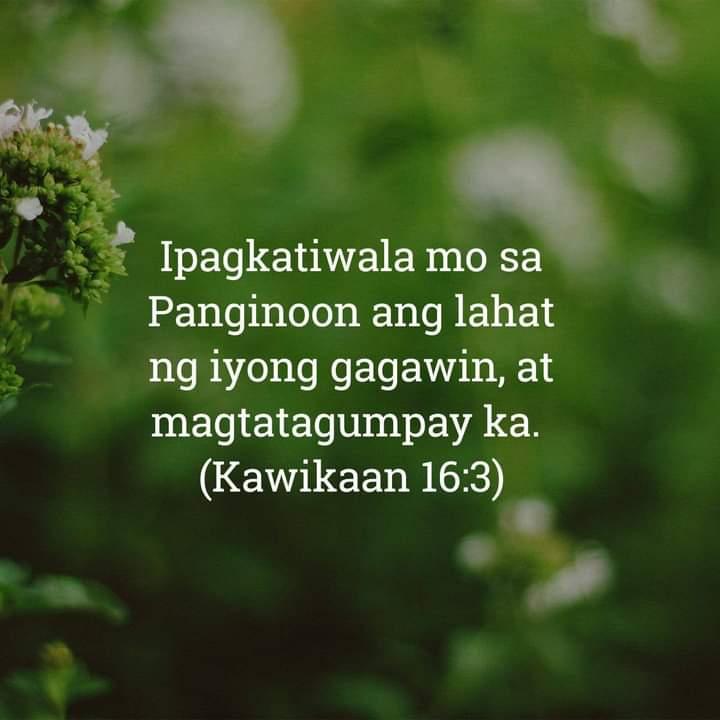 Kawikaan 16:34, Kawikaan 16:34