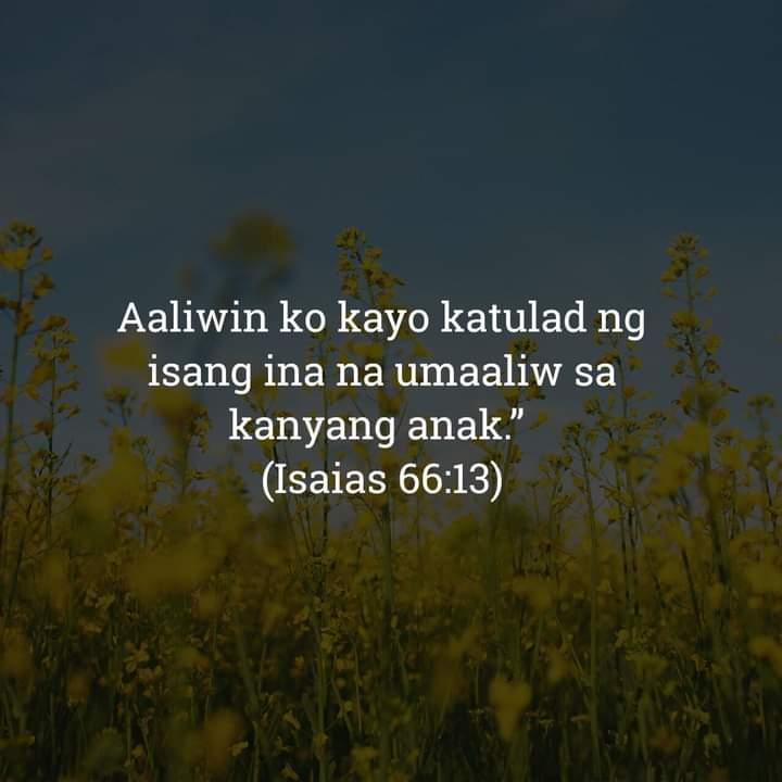 Isaias 66:13, Isaias 66:13