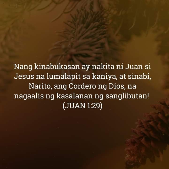 Juan 1:29, Juan 1:29