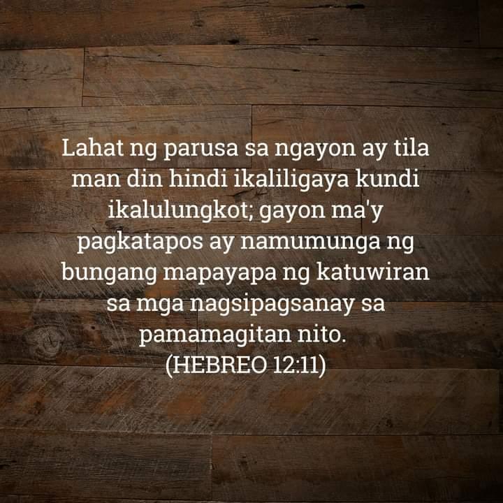 Hebreo 12:11, Hebreo 12:11